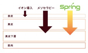 spring浸透図